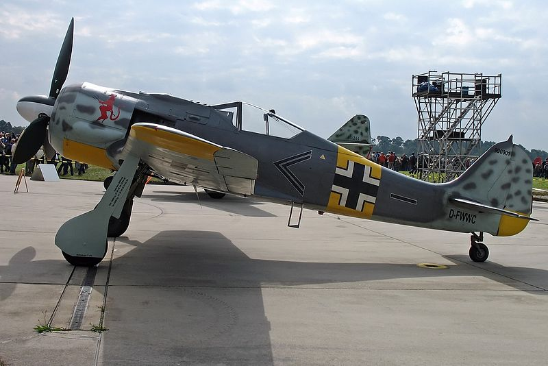 Warbirds rc planes